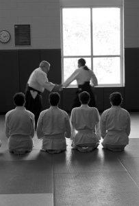 imparare-facendo-come-aikido
