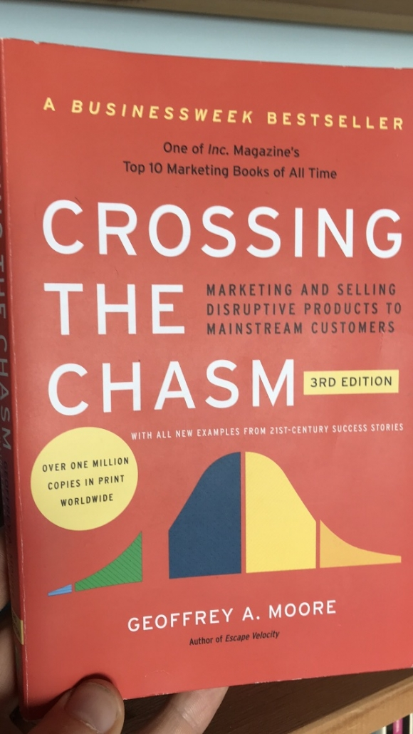 "Copertina libro ""Crossing the chasm"""
